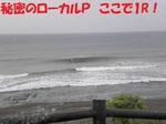 1261203.JPG