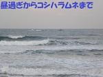 DSCN0494.JPG