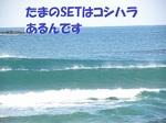 DSCN1194.JPG